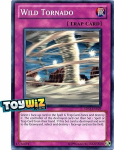 YuGiOh 5D's Starter Deck 2010 Duelist Toolbox Single Card Common 5DS3-EN029 Wild Tornado