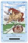 Bella Sara Horses Trading Card Game Series 3 Northern Lights Single Card Common 5/55 Danu