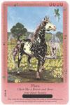 Bella Sara Horses Trading Card Game Series 4 Ancient Lights Single Card Common 15/55 Flora