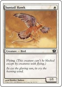 Magic the Gathering Ninth Edition Single Card Common #49 Suntail Hawk