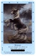 Bella Sara Horses Trading Card Game Single Cards Northern Lights