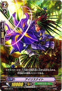 Cardfight Vanguard JAPANESE Awakening of Twin Blades Single Card R Rare BT05-024 Iris Knight BLOWOUT SALE!