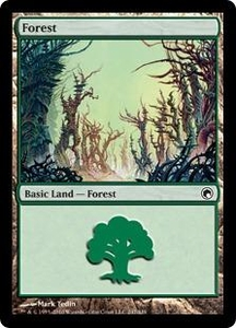 Magic the Gathering Scars of Mirrodin Single Card Land #246 Forest [Random Artwork]