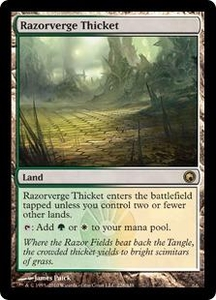 Magic the Gathering Scars of Mirrodin Single Card Rare #228 Razorverge Thicket