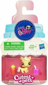 Littlest Pet Shop Cutest Pets Single Figure #2564 Baby Pony