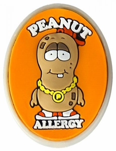 Peanut Allergy Alert Charm BLOWOUT SALE!