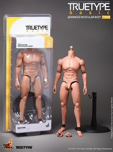 Hot Toys True Type Basics 1/6 Figure Advanced Muscular Body [TTM20]