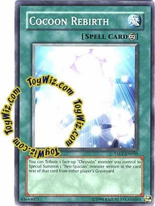 YuGiOh GX Tactical Evolution Single Card Common Cocoon Rebirth TAEV-EN050