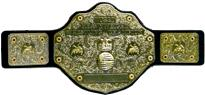 WCW Ultra Deluxe World Heavyweight Replica Belt