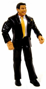 WWE Wrestling Loose Action Figure Matt Striker