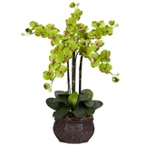 Phalaenopsis with Decorative Vase Silk Flower Arrangement - Nearly Natural - 1211-GR