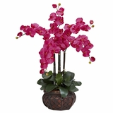 Phalaenopsis with Decorative Vase Silk Flower Arrangement - Nearly Natural - 1211-BU