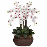 Large Phalaenopsis Silk Flower Arrangement - Nearly Natural - 1201-WH