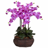 Large Phalaenopsis Silk Flower Arrangement - Nearly Natural - 1201-OR