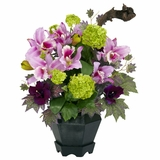 Mixed Cattleya and Hydrangea Silk Arrangement - Nearly Natural - 1257