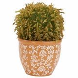 Barrel Cactus Silk Plant - Nearly Natural - 4127