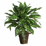 Silver King with Basket Silk Plant in Green - Nearly Natural - 6615