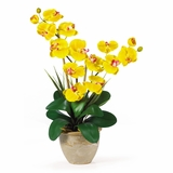 Double Phalaenopsis Silk Orchid Flower Arrangement in Yellow - Nearly Natural - 1026-GD