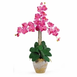 Triple Phalaenopsis Silk Orchid Flower Arrangement in Dark Pink - Nearly Natural - 1017-DP