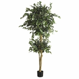 6' Double Ball Ficus Silk Tree in Green - Nearly Natural - 5268