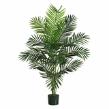 5' Paradise Palm in Green - Nearly Natural - 5259