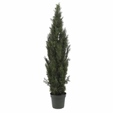 6' Mini Cedar Pine Tree in Green - Nearly Natural - 5292