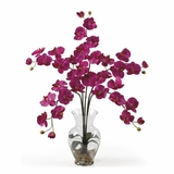 Phalaenopsis Liquid Illusion Silk Flower Arrangement in Beauty - Nearly Natural - 1106-BU