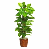 63 Large Leaf Philodendron Silk Plant in Green - Nearly Natural - 6594-0508
