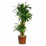 62 Dracena with Basket Silk Plant in Green - Nearly Natural - 6584-0508
