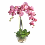 Phalaenopsis with Glass Vase Silk Flower Arrangement in Purple - Nearly Natural - 4643-PR