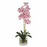 Vanda with Glass Vase Silk Flower Arrangement in Purple - Nearly Natural - 4638-PP