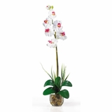 Single Phalaenopsis Liquid Illusion Silk Flower Arrangement in White - Nearly Natural - 1104-WH