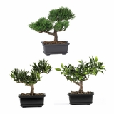 8.5 Bonsai Silk Plant Collection (Set of 3) in Green - Nearly Natural - 4122