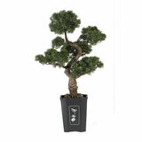 36 Cedar Bonsai Silk Plant in Green - Nearly Natural - 4100
