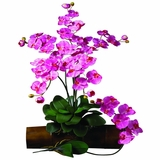 Phalaenopsis Stem (Set of 12) - Nearly Natural - 2044-DP-12
