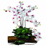 Phalaenopsis Stem (Set of 12) - Nearly Natural - 2044-WH-12