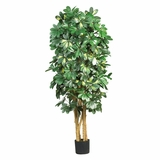 5' Schefflera Silk Tree in Green - Nearly Natural - 5202