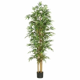 75 Bamboo Silk Tree in Green - Nearly Natural - 5254