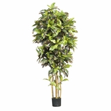 6' Croton Silk Tree in Green - Nearly Natural - 5211