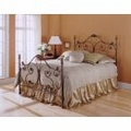 Iron Bed / Metal Bed - Aynsley Bed in Majestique Finish - Fashion Bed Group