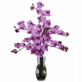 Phalaenopsis with Vase Silk Flower Arrangement - Nearly Natural - 1191-MA