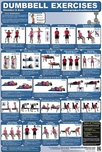 Dumbbell Exercise Poster 2