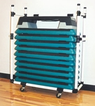 Health Club Step Cart