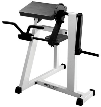 Multi Sports Bicep / Tricep Machine