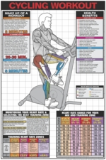 Upright Cycle Workout Poster Laminated