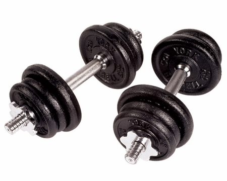 York Cast Iron Dumbbell Set - 30lbs Total Weight