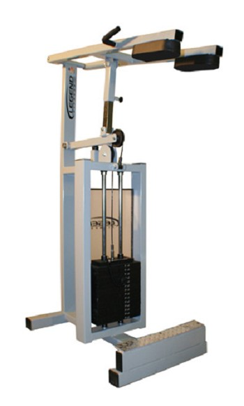 Legend Standing Calf Machine 915