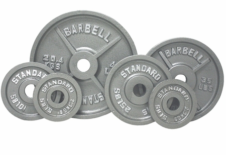 Olympic Weight Plate Set Gray - 355lbs