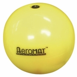 6lb Soft Mini Weighted Ball