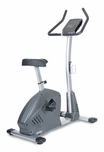 Fitnex B55SG Upright Exercise Bike